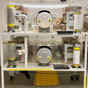 ACS germ free services facility